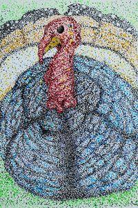 Titu - My Turkey - Pointillism - Shree