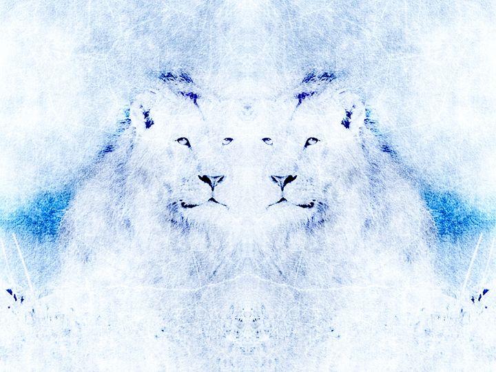 White lions - White Angel