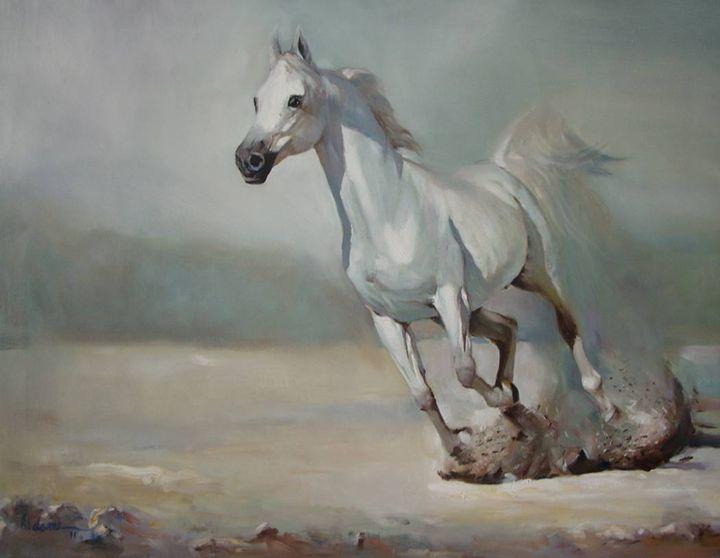 white horse - dami