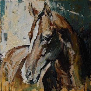 Horse piortrait