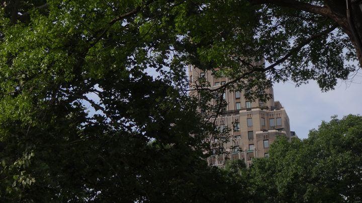 Washington Square - George Hertz
