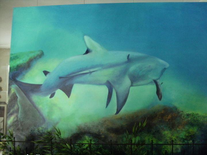 Mr Bull Shark - Academy of Fine Art & Studio