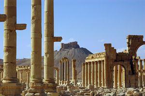 Palmyra - Syria - Fleur De Lys