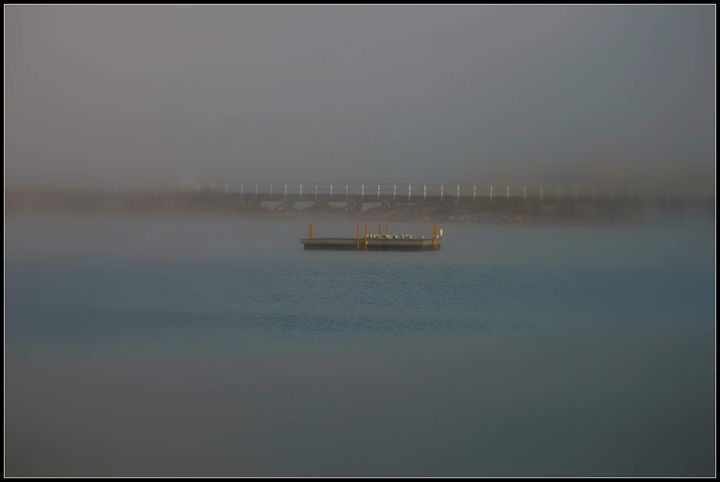Misty morning 2016 - LynneE