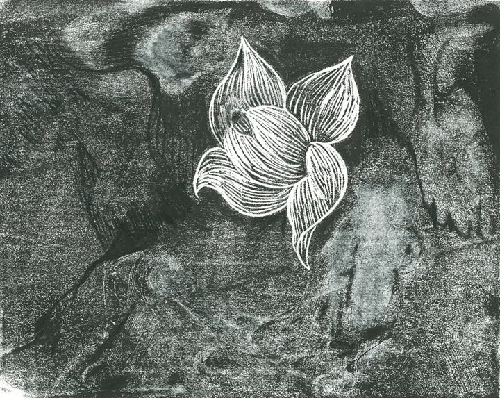 Night blooming Jasmine - Toad Hallow Studio