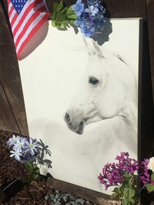 wall art horse portrait