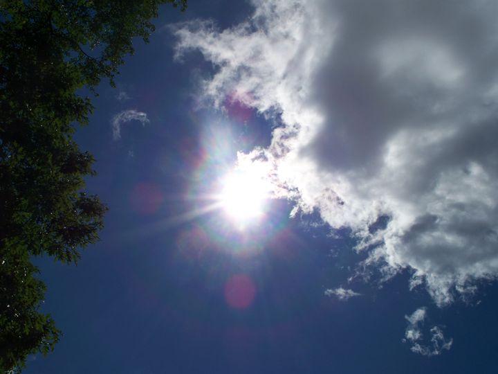 Beacon Overhead - Silva Nature Photography