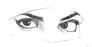 beauty of an eye