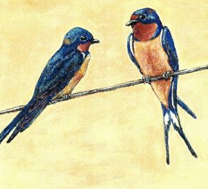 BARN-SWALLOW PAIR - VLeeORIGINALS