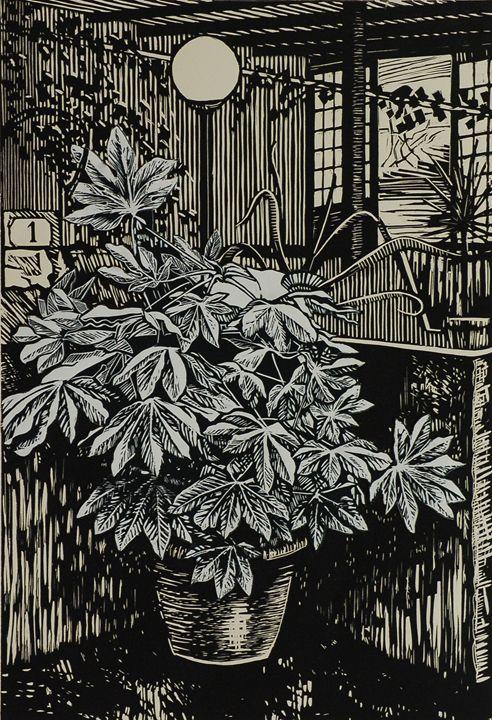Potted Plant - Tom David