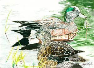 Tranquil Ducks