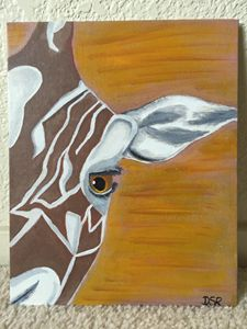 Close Up Giraffe Face