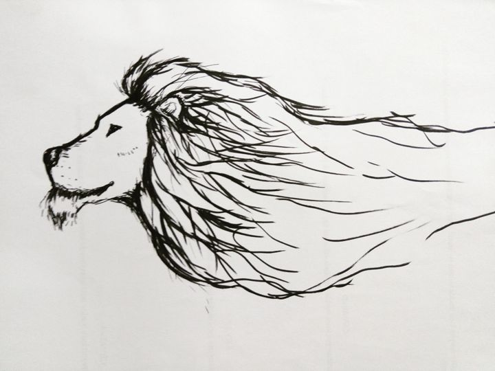 Lion - my drawings