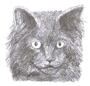 black cat - Printable Drawings