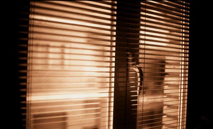Appartment window blind sepia - edwardolive