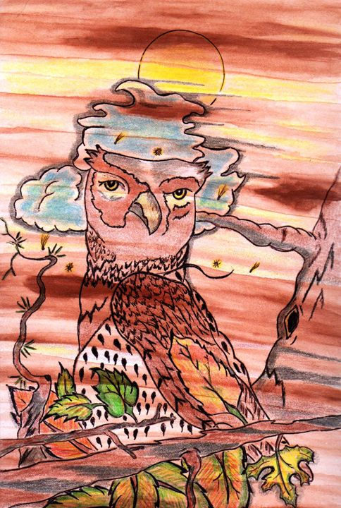 BARN OWL - CUSTOM ART MASTERPIECES