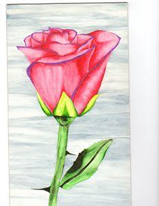 RED ROSE WATERCOLOR