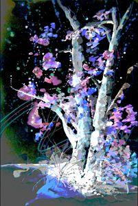 Sedona Tree Magic