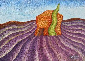 Lavender field Provence, France