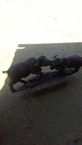 Buffalo Lovers