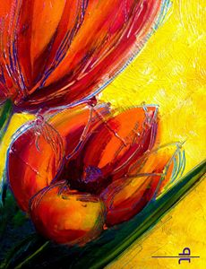 Tulips close-up