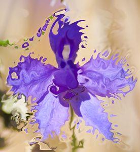 violet flower fractals - brunopaolobenedetti