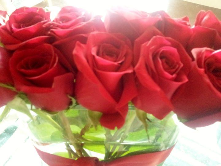 Roses - Boogiba