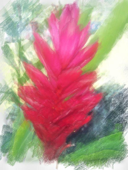 Red Ginger-2 - Boogiba