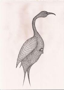 ibis - Pedro Freitas