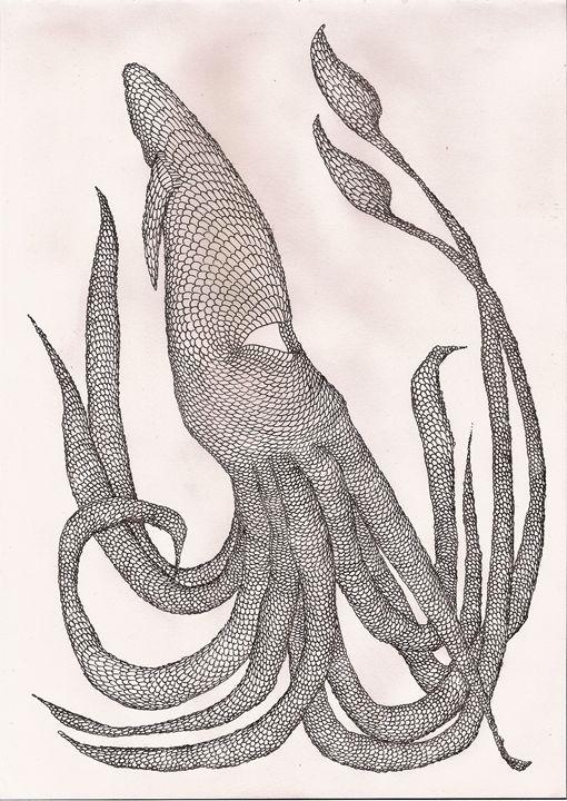 squid - Pedro Freitas