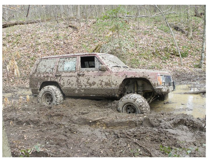 Stuck In The Mud - Glass Photography by Alison