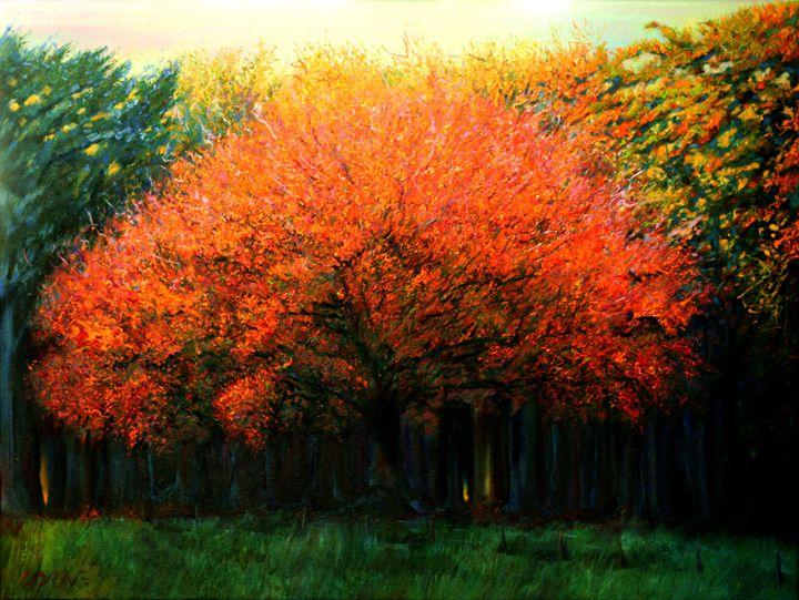 Autumn tree at Laren (2013) - Corné Akkers art works