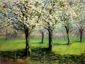 Flowering trees (2014) (sold) - Corné Akkers art works