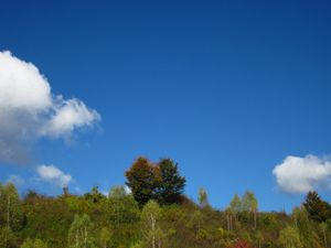 Spring skyes