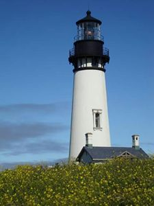 Pacific Lighthouse