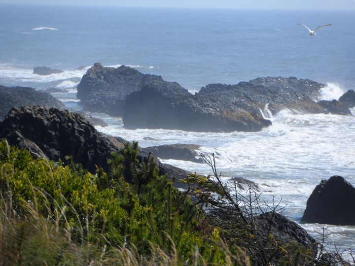 Pacific View - Arletta's Photography