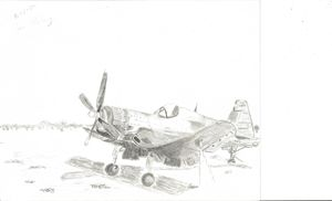 Lonely Warbird