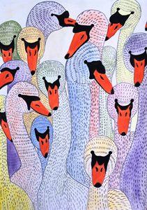 The swans in wonderland