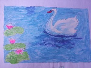 Swan in rectangle