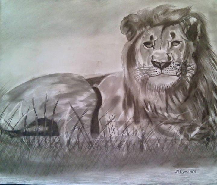 The African lion - zinnieart