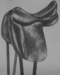 Saddle Series, Dressage