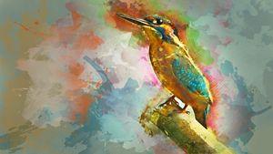 Bird Water color