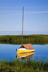 Sailboat anchored in salt marsh.