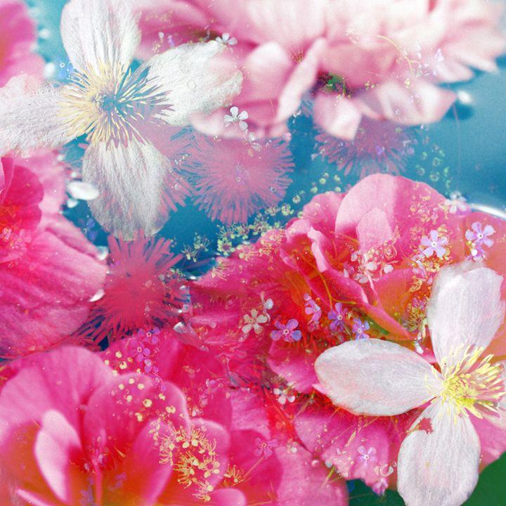Flowers In Water29 - Flowers by Alaya Gadeh