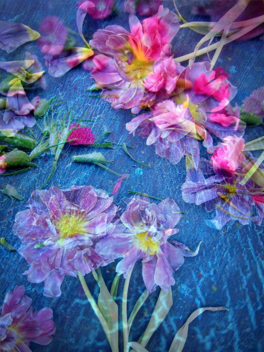 Poetic Flowers39 - Flowers by Alaya Gadeh