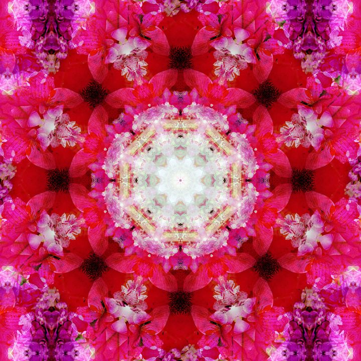 Diamond Blossom - Flowers by Alaya Gadeh