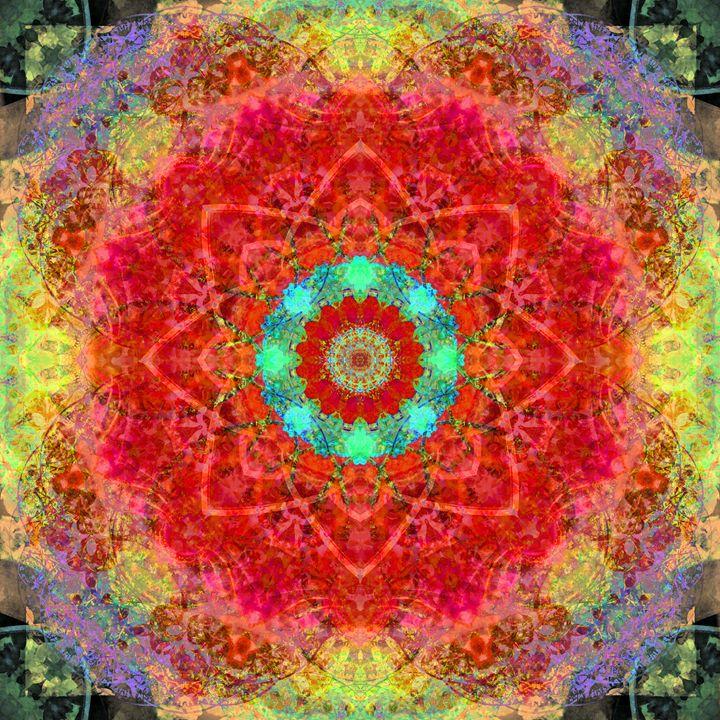 Love Star Mandala - Flowers by Alaya Gadeh