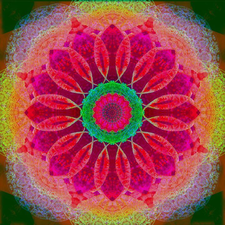 Floral Mandala 263 - Flowers by Alaya Gadeh