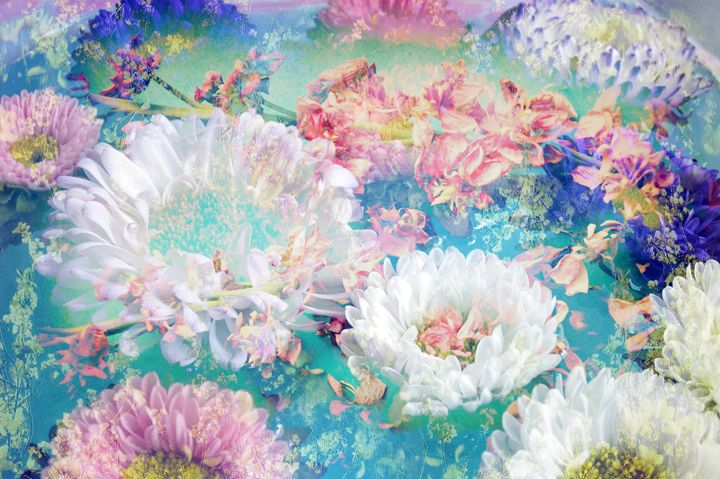 Ocean Of Flowers - Flowers by Alaya Gadeh