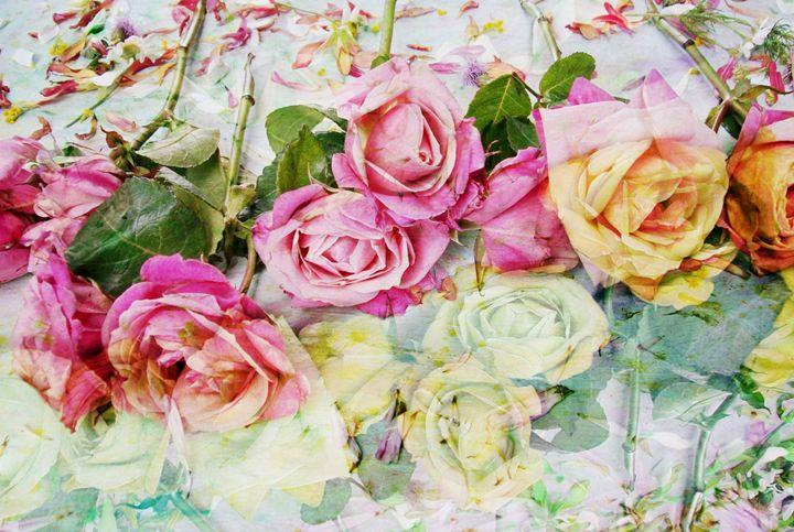 Rose Memory - Flowers by Alaya Gadeh